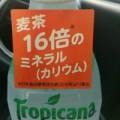 16倍って本当かな~?(; ̄ー ̄)